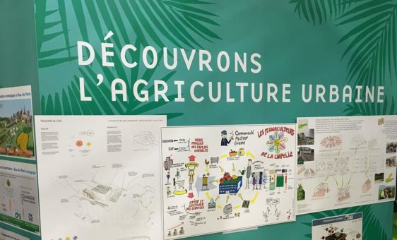 Traversine on Paris Agriculture Fair