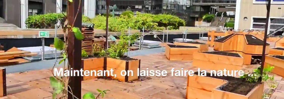 Making of du jardin de la Traversine